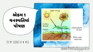 STD-7-SCIENCE-CH-1-MCQ-ધોરણ-7-વિજ્ઞાન-એકમ-1-વનસ્પતિ-માં-પોષણ-1
